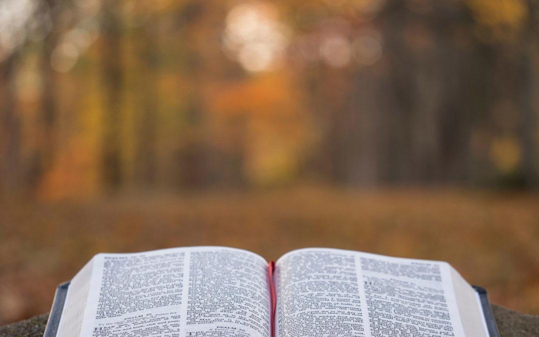 227: Santa Biblia